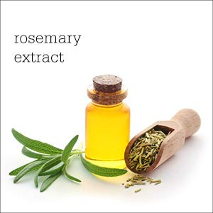 Plum Hibiscus & Rosemary Gentle Defence Shampoo, 300ml